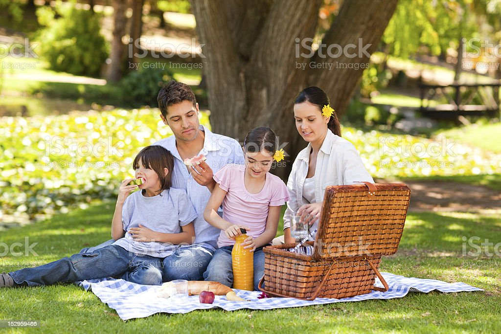 Lovely family picnicking in the park stock photo