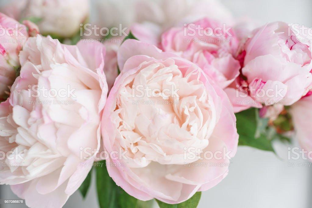 Schöne Blumen in Glasvase. Schöner Blumenstrauß von weißen und Rosa Pfingstrosen. Florale Komposition, Tageslicht. Sommer-Wallpaper. Pastell-Farben – Foto