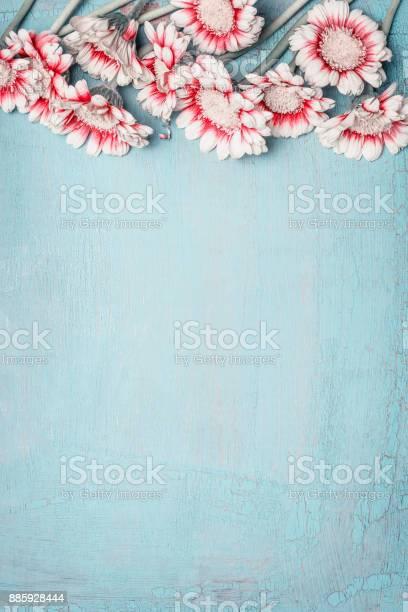 Lovely flowers on light blue background floral border top view for picture id885928444?b=1&k=6&m=885928444&s=612x612&h=ebx3fdzhfbjbb0auguhn3busp2zyjcsr2ecnhdytmxq=