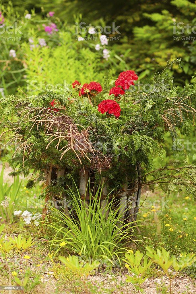 lovely garden royalty-free stock photo