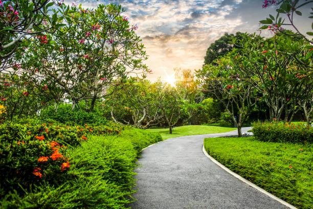 Schöner Garten mit Fußweg – Foto