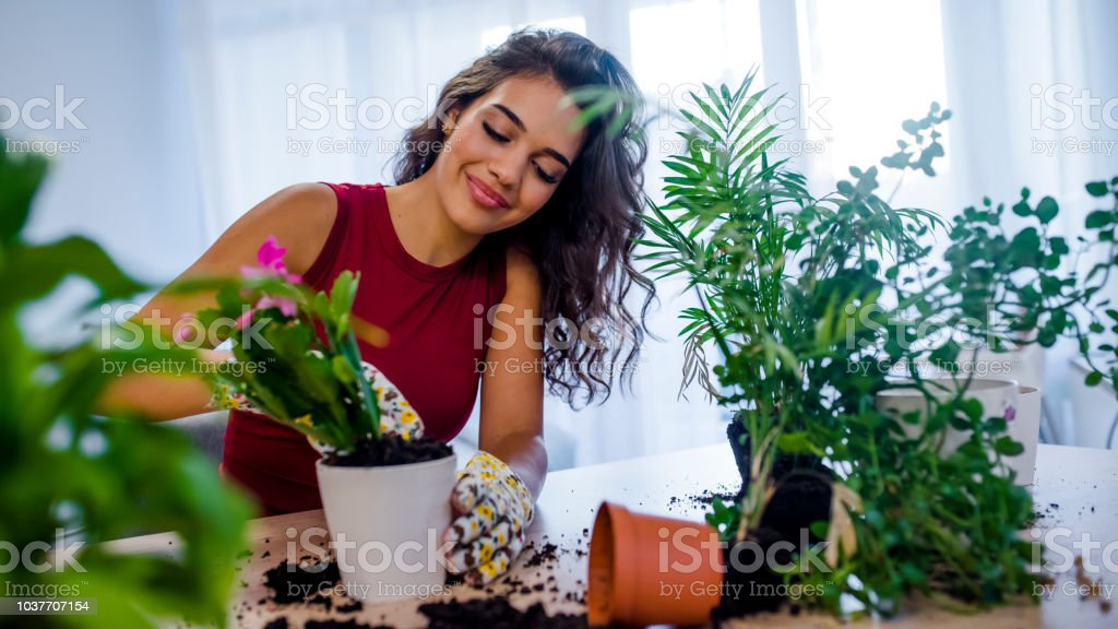Preciosa ama de casa con flor en maceta y jardinería conjunto - foto de stock