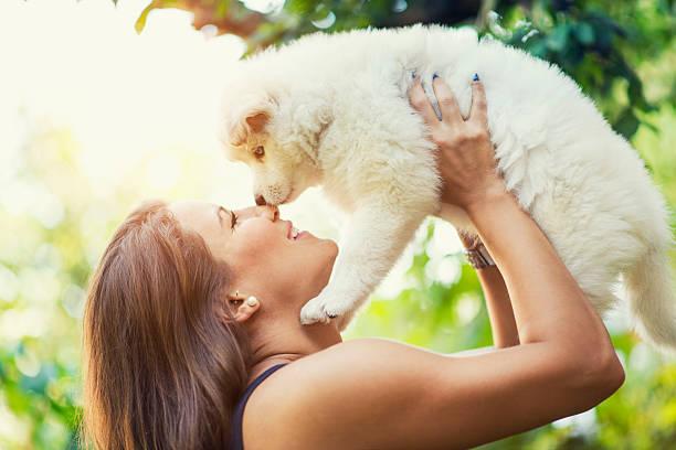 Lovely husky baby puppy how kiss his female owner picture id477778706?b=1&k=6&m=477778706&s=612x612&w=0&h=90c3imc9mawugv2tkd1ol4bkfo4yharkmcv0k9cdu1m=