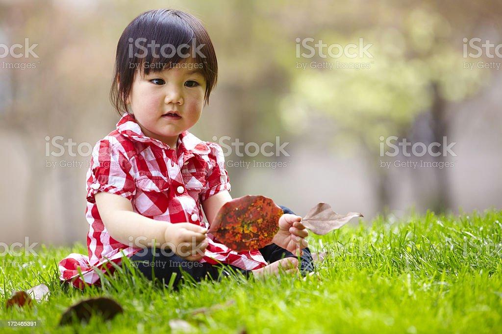 lovely little girl on grass royalty-free stock photo