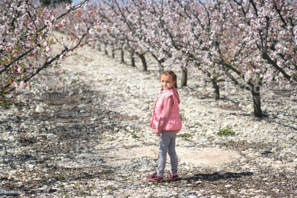 Lovely little girl standing in a grove of fruit trees. Spain stock photo