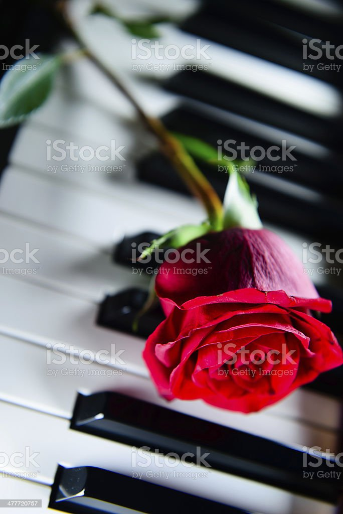 Lovely Music royalty-free stock photo