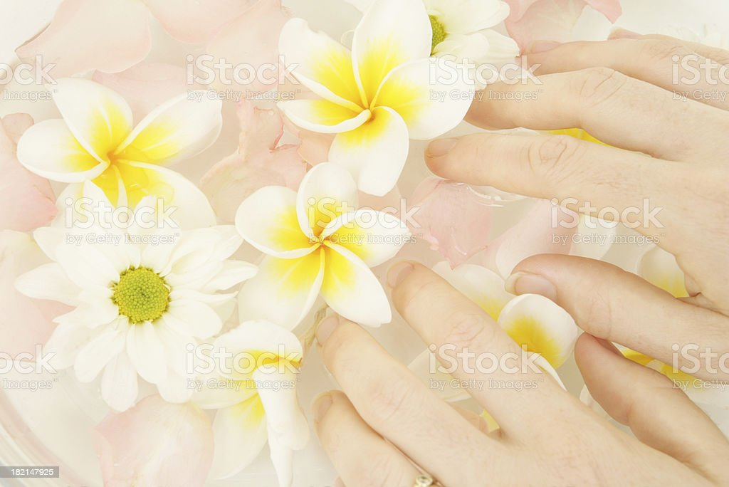 Lovely Nails royalty-free stock photo