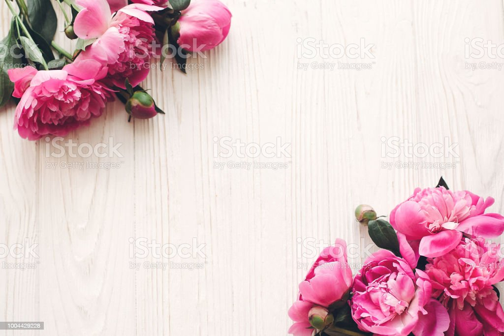Lovely pink peonies border on rustic white wooden background top lovely pink peonies border on rustic white wooden background top view space for text mightylinksfo