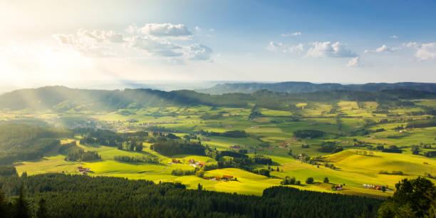 schöne ländliche landschaft im schönen sonnenlicht. weide-landschaft mit bauernhöfe. - allgäu stock-fotos und bilder