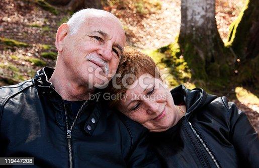 510491454 istock photo Lovely senior couple 119447208