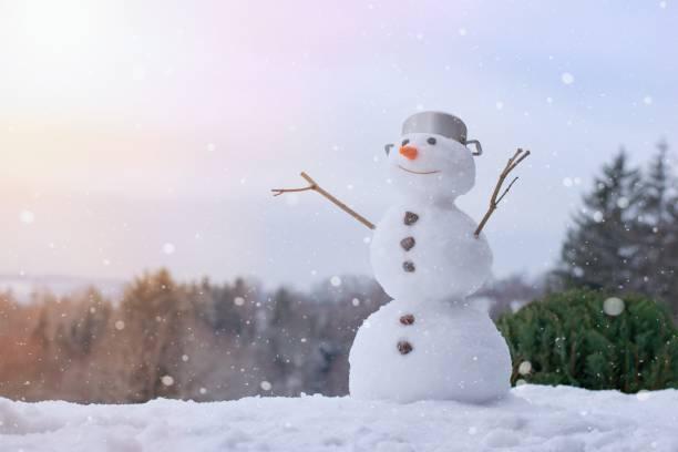 Lovely smiling snowman in the winter garden stock photo