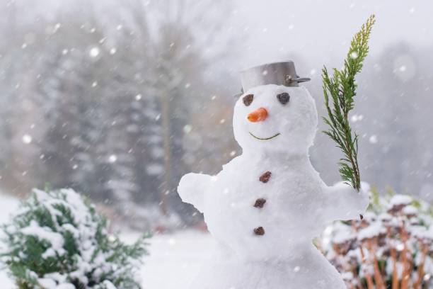 Lovely smiling snowman in the winter garden within a heavy snowfall stock photo