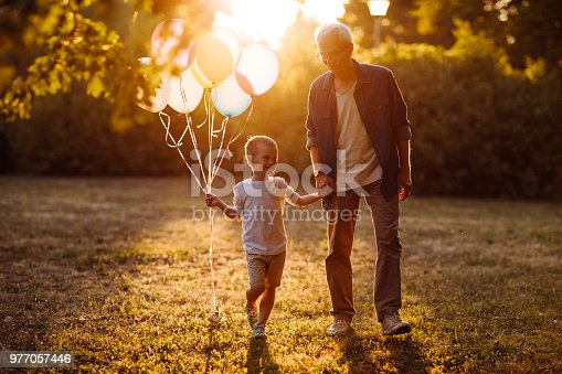 istock Lovely spring walk with grandfather 977057446