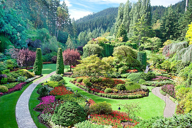 Lovely sunken garden at Butchart Gardens in British Columbia A view of the sunken garden at Butchart Gardens, Central Saanich, Vancouver Island, British Columbia, Canada british columbia stock pictures, royalty-free photos & images