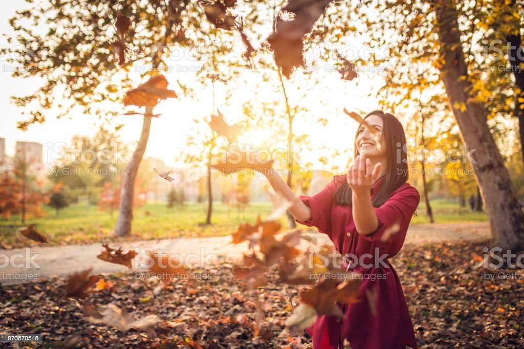 Lovely sunny autumn day in the public park stock photo