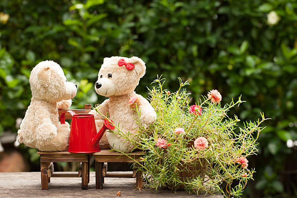 Lovely teddy bear and watering can in the garden picture id547537586?b=1&k=6&m=547537586&s=612x612&w=0&h=zarf0lnstopzvhxypwxpfczay1elpmphy4eixm9jikc=