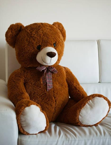 Super Best Big Teddy Bear Stock Photos Pictures Royalty Free Interior Design Ideas Inesswwsoteloinfo