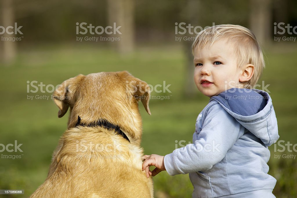 Lovely toddler with a dog stock photo