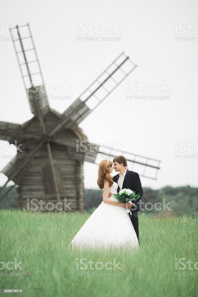 Lovely wedding couple, bride and groom posing in field during sunset stock photo