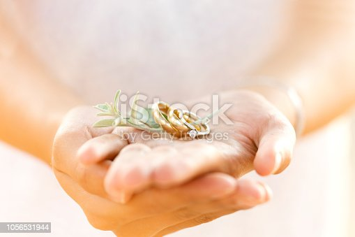 Lover Rings on Human Hands