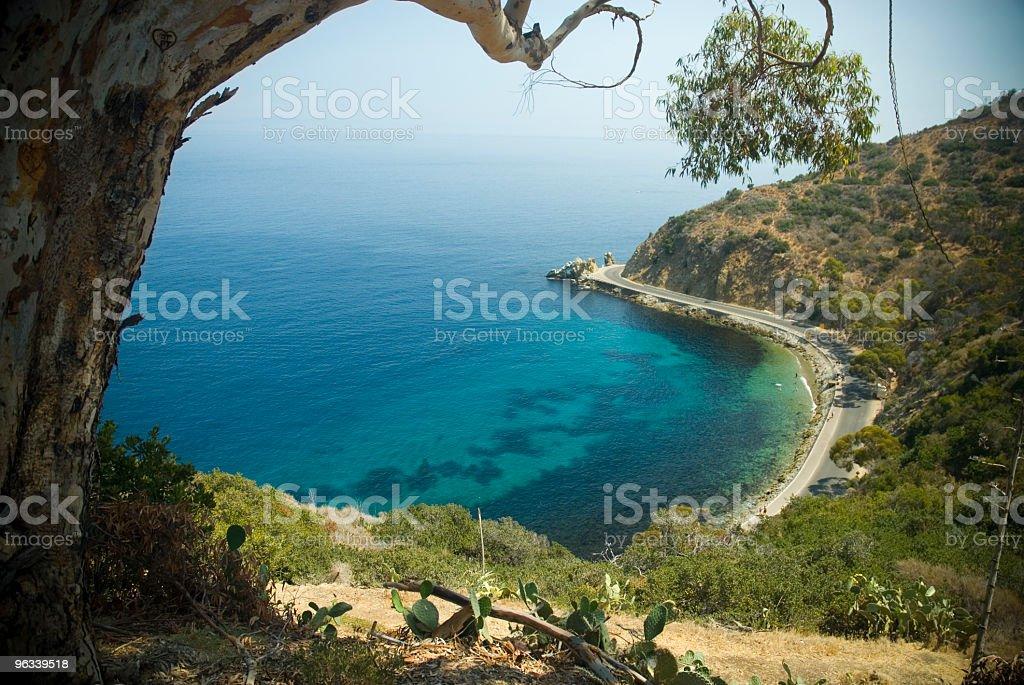 Miłośników Cove - Zbiór zdjęć royalty-free (Wyspa Catalina)