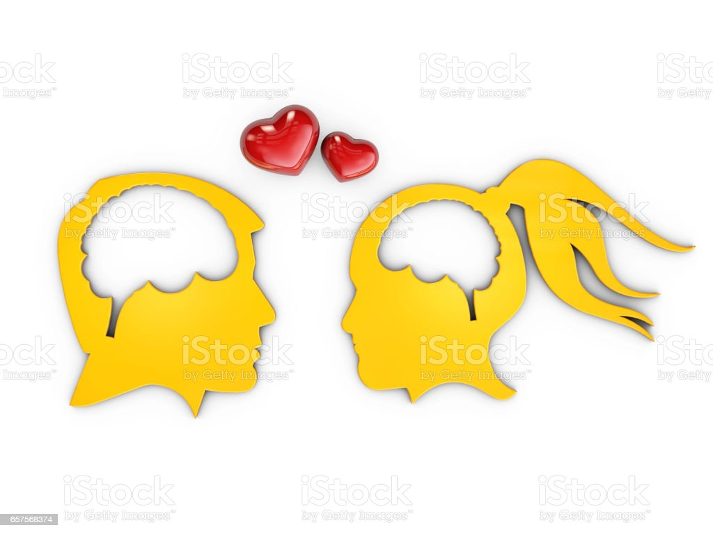 Lovers human heads with brain, 3d Illustration isolated White stock photo