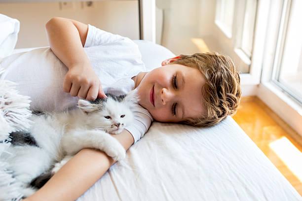Loving boy cuddling a kitten in bedroom picture id611767256?b=1&k=6&m=611767256&s=612x612&w=0&h=fknje86rhiimuzssadql9ewpnt5hg2fi9i35btzqddu=