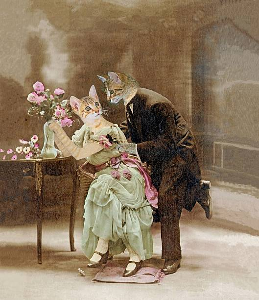 Loving cats in 1900. The declaration of love. Painting, illustration cat valentine stock pictures, royalty-free photos & images