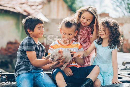 Group of children holding and carresing a baby piglet