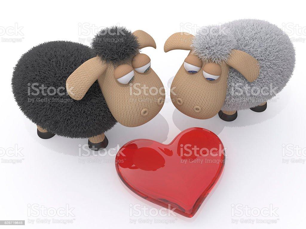 Loving couple of sheep stock photo