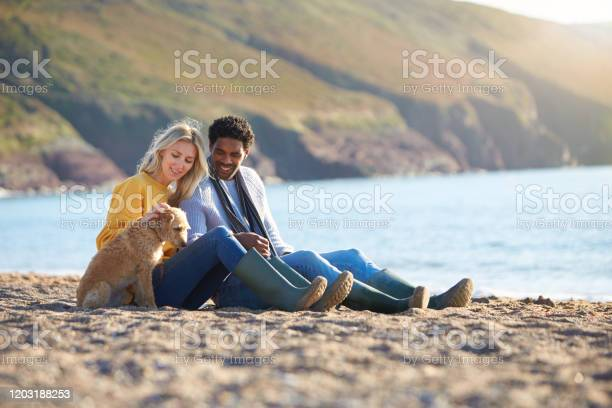 Loving couple sitting on sand as they walk with dog along shoreline picture id1203188253?b=1&k=6&m=1203188253&s=612x612&h=kzo698f2z gwvxlenpwp d7xnohub5fsstifohyu4mi=