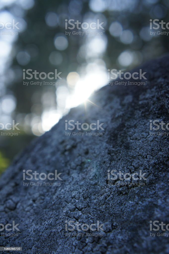 Low angle looking over a rock face at blurred trees and the sun stock photo