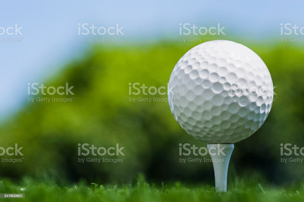 Low angle of a Golf Ball on wooden tee stock photo