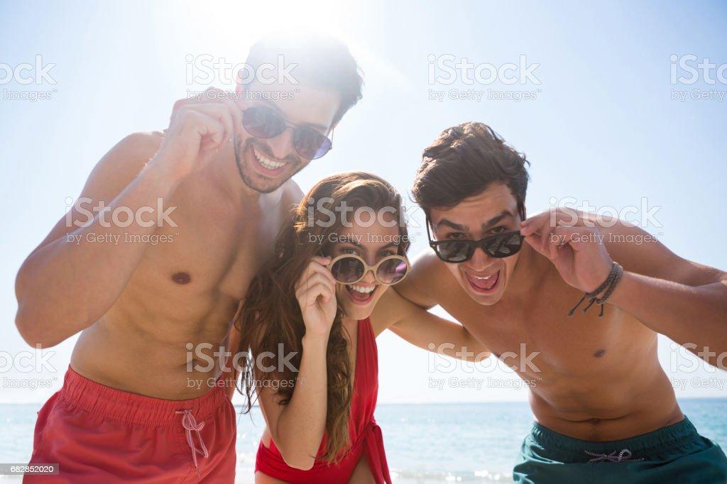 Niedrigen Winkel Porträt glücklich Freunde tragen Sonnenbrillen gegen klaren Himmel Lizenzfreies stock-foto