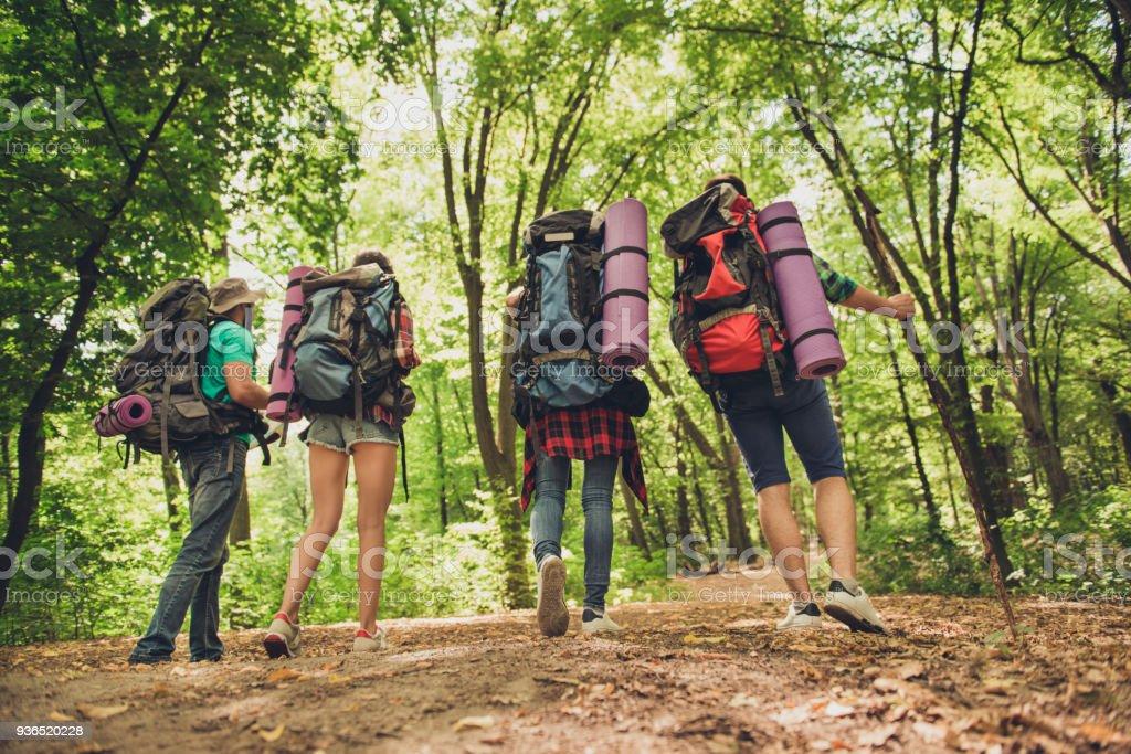 Niedrigen Winkel Rückansicht Von Vier Touristen Wandern Im