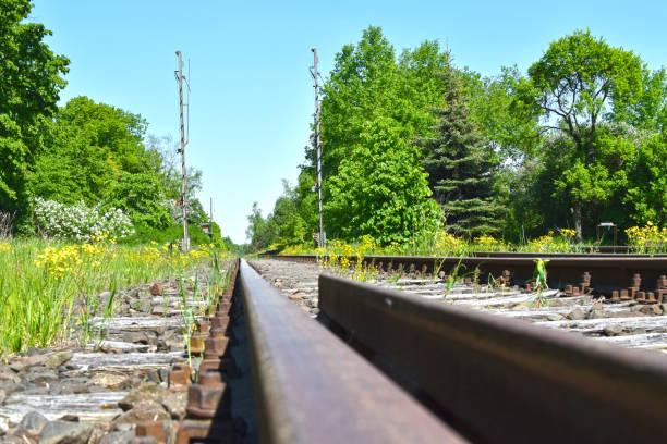 낮은 각도 레일바이크와 함께 여행에만 사용 하는 차가 철도 트랙의 샷. - 브란덴부르크 주 뉴스 사진 이미지