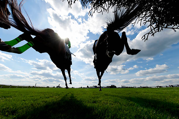 Low angle view Horse Racing Steeplechase jumping stock photo