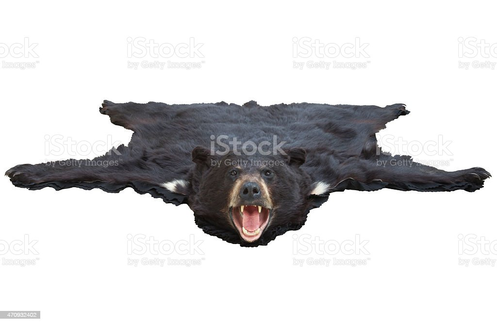Low angle view of a bearskin rug isolated on white stock photo