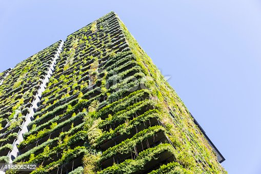 Low angle view of apartment building with vertical garden, sky background with copy space, Green wall-BioWall or living wall is a wall covered with living plants on residential tower in sunny day, Sydney Australia, full frame horizontal composition