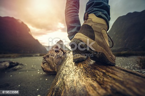 istock Low angle view of hiker standing on log, mountain scenery 619523588