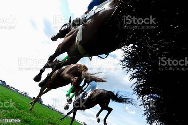 Low angle view of horse racing steeplechase picture id171137440?b=1&k=6&m=171137440&s=612x612&h=z5m3mmnnwgxeei9ewqbmvsr3vinczshos2szxpc vkc=