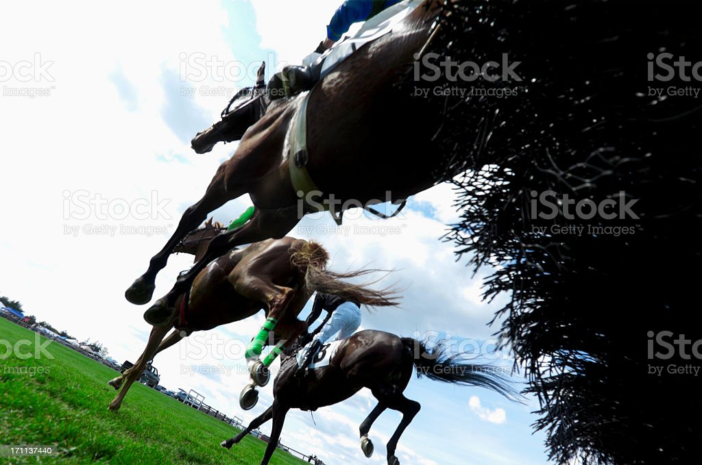 Low angle view of Horse Racing - Steeplechase stock photo