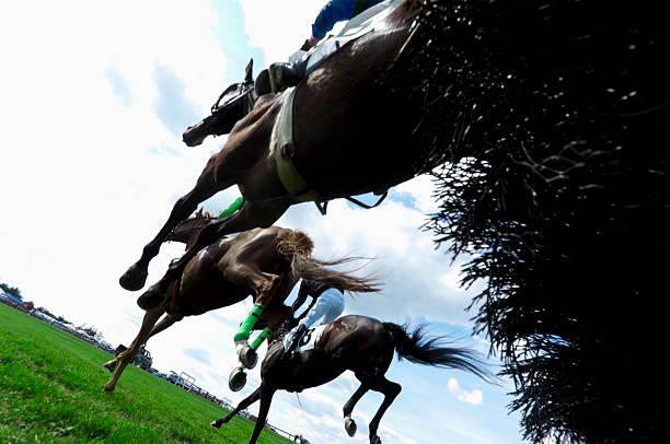저해상 앵글을 남퐁 경마-장애물 경주 - horse racing 뉴스 사진 이미지