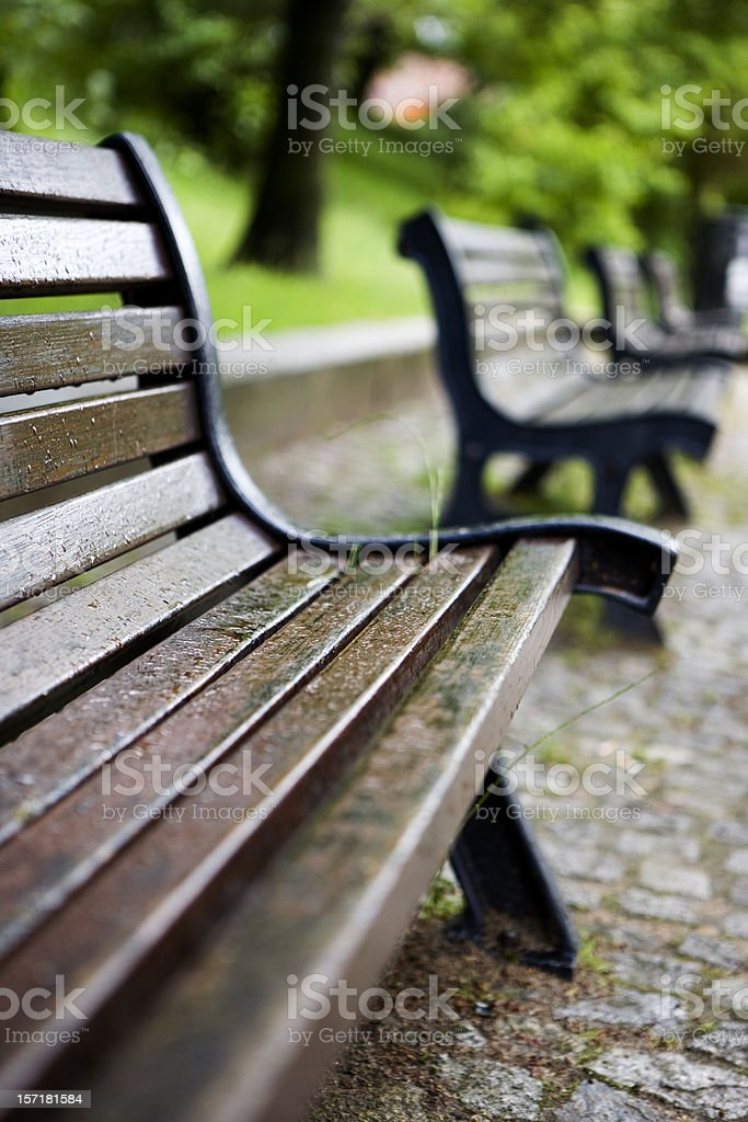 Low angle view of rain soaked park benches royalty-free stock photo