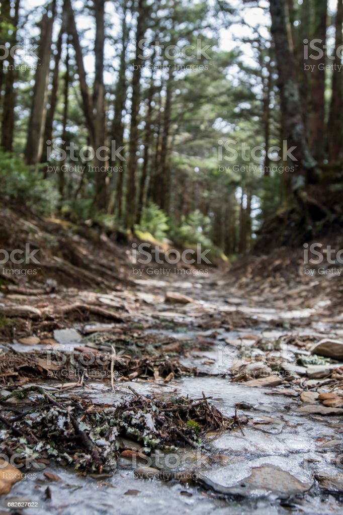 Low Angle View of Trail with Ice stock photo