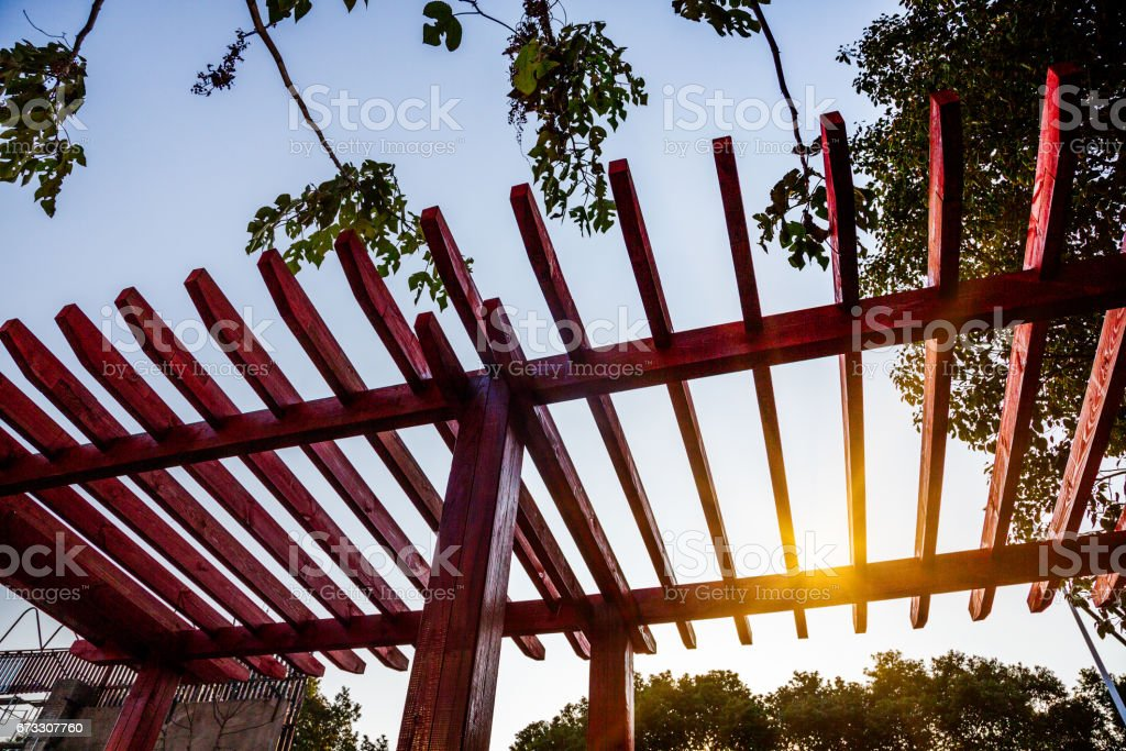 Low Angle View Of Wooden Ceiling Against Tree At Park stock photo