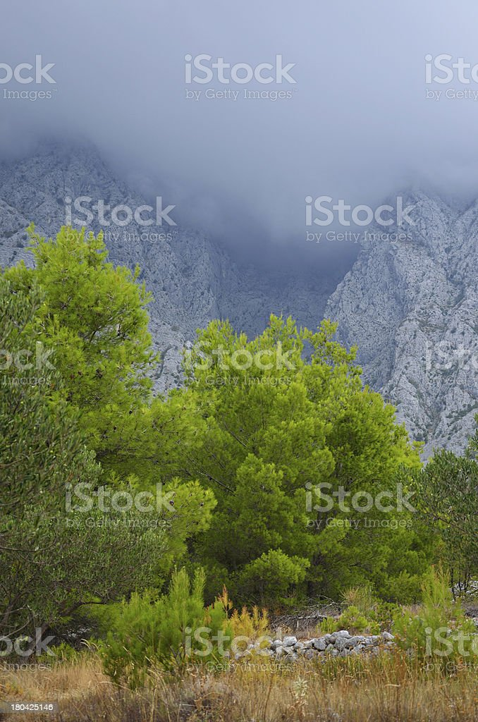 Low cloud in the mountains royalty-free stock photo