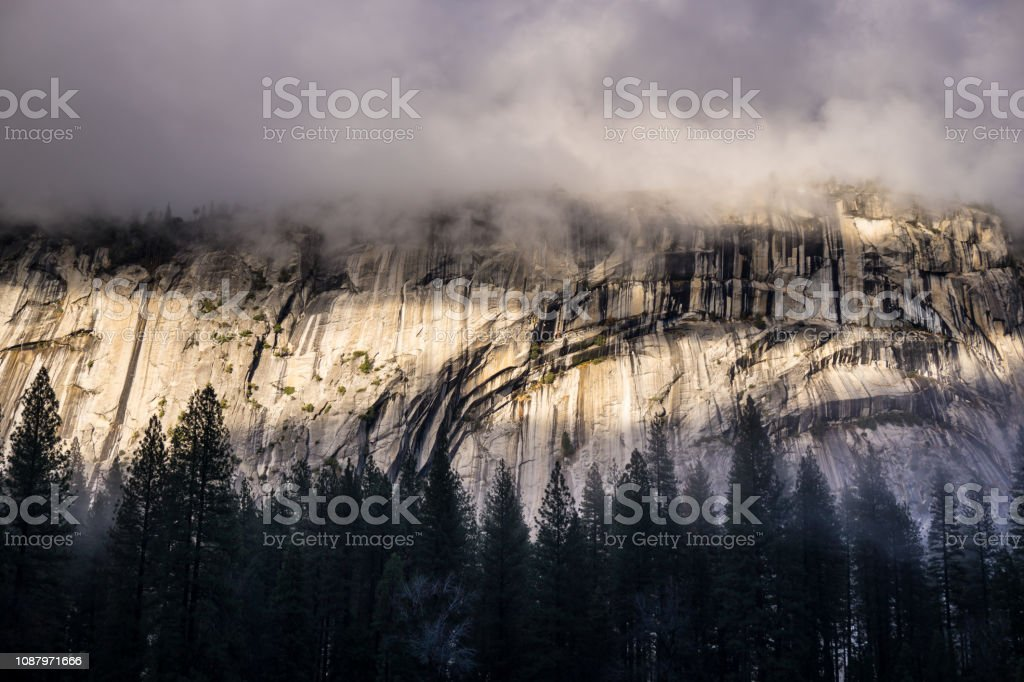 Low Cloud Over Trees Beneath Cliff Face in Yosemite stock photo
