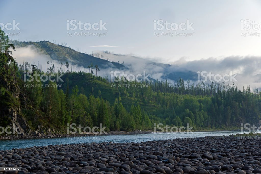Low clouds on a mountain slope. stock photo