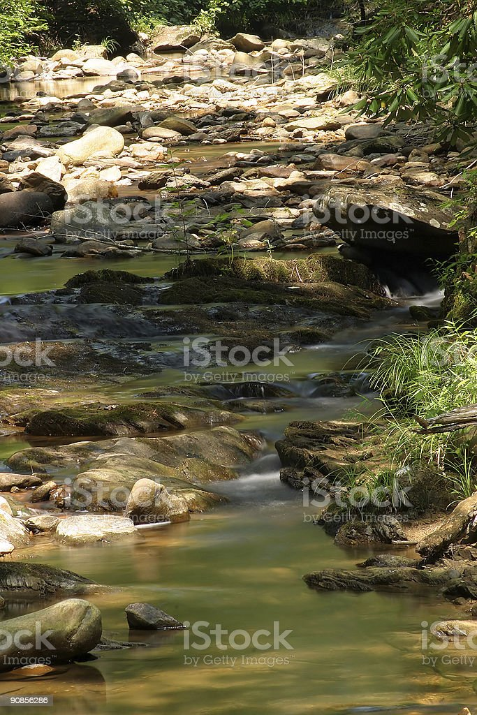 Low Creek Bed royalty-free stock photo